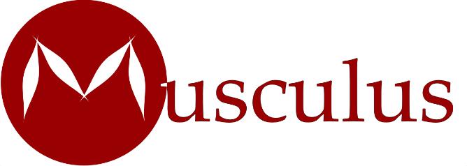 Logo Musculus